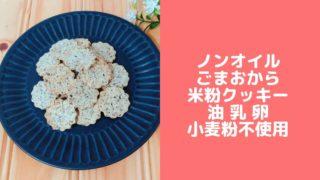 おからクッキー 米粉 おからパウダー バターなし 卵なし 小麦粉なし レシピ 糖質制限
