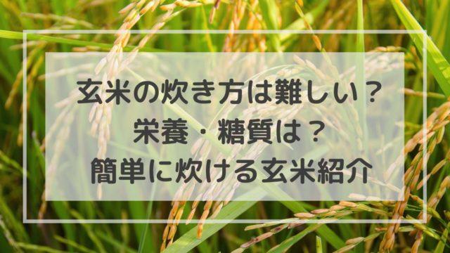 玄米 炊き方 市販 簡単 白米