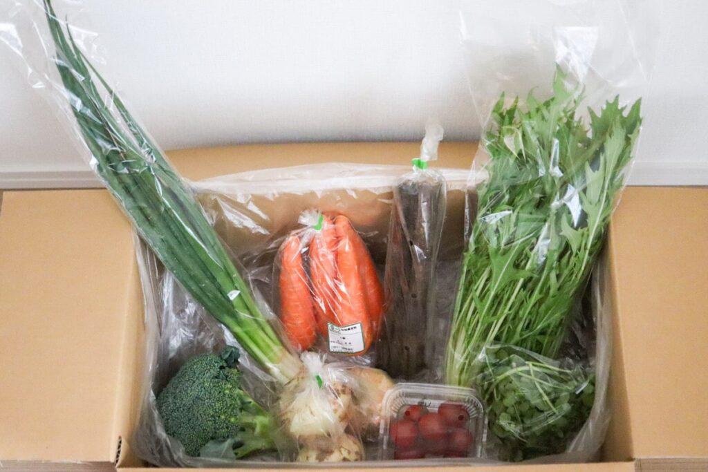 ビオマルシェ 有機野菜 オーガニック お試しセット